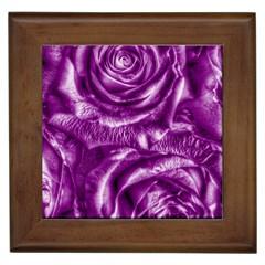 Gorgeous Roses,purple  Framed Tiles