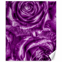 Gorgeous Roses,purple  Canvas 20  x 24