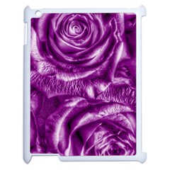Gorgeous Roses,purple  Apple iPad 2 Case (White)