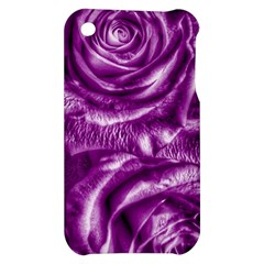 Gorgeous Roses,purple  Apple iPhone 3G/3GS Hardshell Case