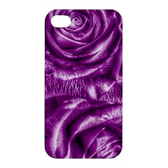 Gorgeous Roses,purple  Apple Iphone 4/4s Hardshell Case