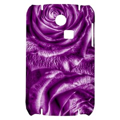 Gorgeous Roses,purple  Samsung S3350 Hardshell Case