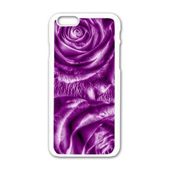 Gorgeous Roses,purple  Apple iPhone 6 White Enamel Case