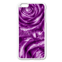 Gorgeous Roses,purple  Apple iPhone 6 Plus Enamel White Case