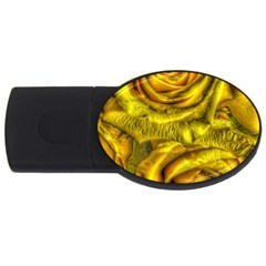 Gorgeous Roses, Yellow  Usb Flash Drive Oval (4 Gb)