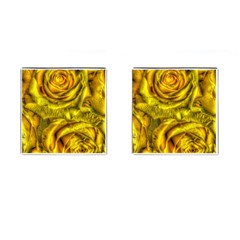 Gorgeous Roses, Yellow  Cufflinks (Square)