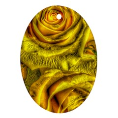 Gorgeous Roses, Yellow  Oval Ornament (two Sides)