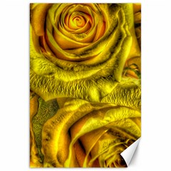 Gorgeous Roses, Yellow  Canvas 20  X 30