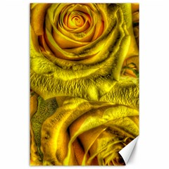 Gorgeous Roses, Yellow  Canvas 24  x 36