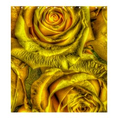 Gorgeous Roses, Yellow  Shower Curtain 66  x 72  (Large)