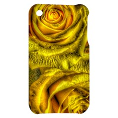Gorgeous Roses, Yellow  Apple iPhone 3G/3GS Hardshell Case