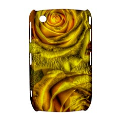 Gorgeous Roses, Yellow  Curve 8520 9300