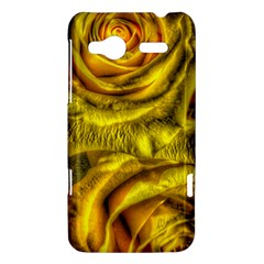 Gorgeous Roses, Yellow  HTC Radar Hardshell Case