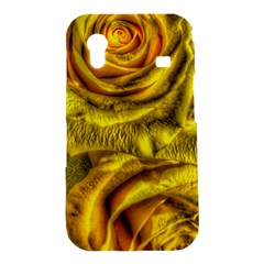 Gorgeous Roses, Yellow  Samsung Galaxy Ace S5830 Hardshell Case