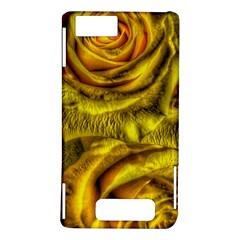 Gorgeous Roses, Yellow  Motorola DROID X2