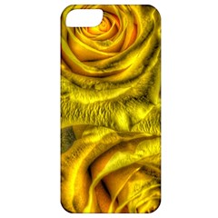 Gorgeous Roses, Yellow  Apple iPhone 5 Classic Hardshell Case