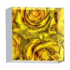 Gorgeous Roses, Yellow  5  x 5  Acrylic Photo Blocks