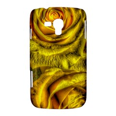 Gorgeous Roses, Yellow  Samsung Galaxy Duos I8262 Hardshell Case
