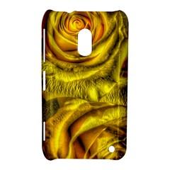 Gorgeous Roses, Yellow  Nokia Lumia 620