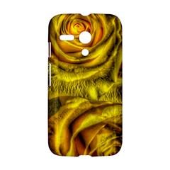 Gorgeous Roses, Yellow  Motorola Moto G