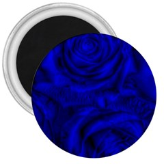 Gorgeous Roses,deep Blue 3  Magnets