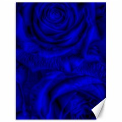 Gorgeous Roses,deep Blue Canvas 12  X 16