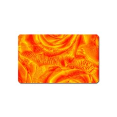 Gorgeous Roses, Orange Magnet (name Card)
