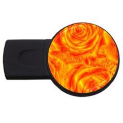 Gorgeous Roses, Orange USB Flash Drive Round (2 GB)