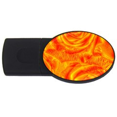 Gorgeous Roses, Orange USB Flash Drive Oval (1 GB)