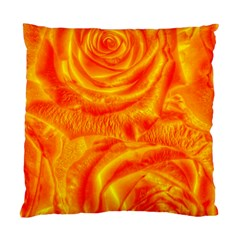 Gorgeous Roses, Orange Standard Cushion Case (one Side)