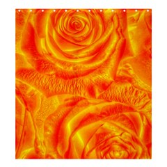 Gorgeous Roses, Orange Shower Curtain 66  x 72  (Large)