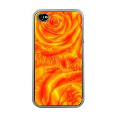 Gorgeous Roses, Orange Apple Iphone 4 Case (clear)