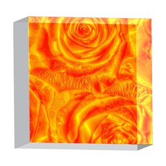 Gorgeous Roses, Orange 5  x 5  Acrylic Photo Blocks
