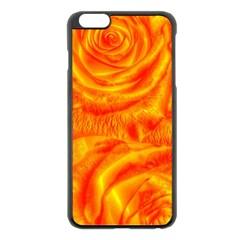Gorgeous Roses, Orange Apple Iphone 6 Plus Black Enamel Case