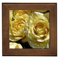 Yellow Roses Framed Tiles
