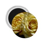 Yellow Roses 2.25  Magnets Front