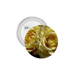 Yellow Roses 1.75  Buttons