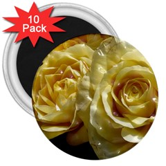 Yellow Roses 3  Magnets (10 Pack)