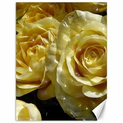 Yellow Roses Canvas 12  X 16