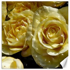 Yellow Roses Canvas 16  X 16