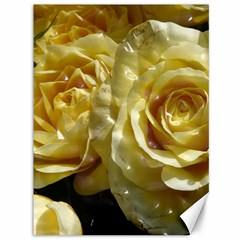 Yellow Roses Canvas 36  X 48