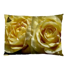 Yellow Roses Pillow Cases