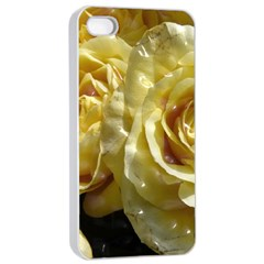 Yellow Roses Apple iPhone 4/4s Seamless Case (White)