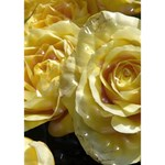 Yellow Roses I Love You 3D Greeting Card (7x5)  Inside