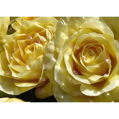 Yellow Roses Birthday Cake 3d Greeting Card (7x5)