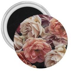 Great Garden Roses, Vintage Look  3  Magnets
