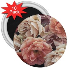 Great Garden Roses, Vintage Look  3  Magnets (10 Pack)