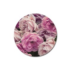 Great Garden Roses Pink Magnet 3  (round)