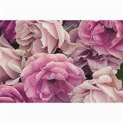 Great Garden Roses Pink Collage 12  X 18