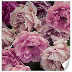 Great Garden Roses Pink Canvas 16  X 16
